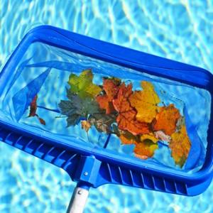 Fall pool care