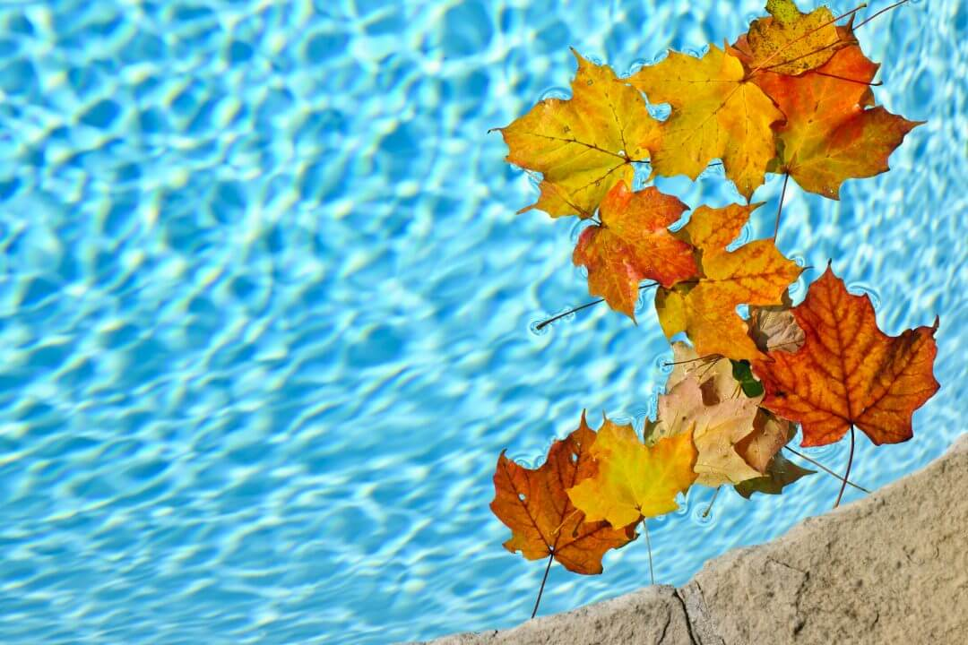 Fall Pool Information