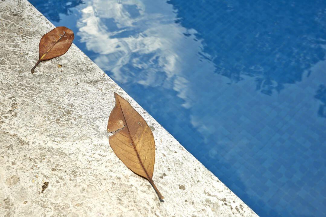 Leaf Removal Tips